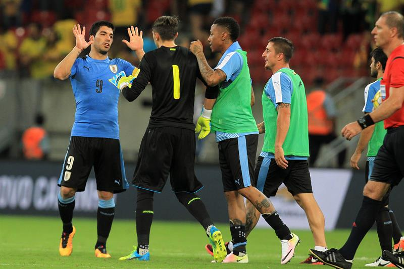 As se jugar la fecha 9 de la eliminatoria sudamericana for Ultimos chimentos dela farandula argentina 2016