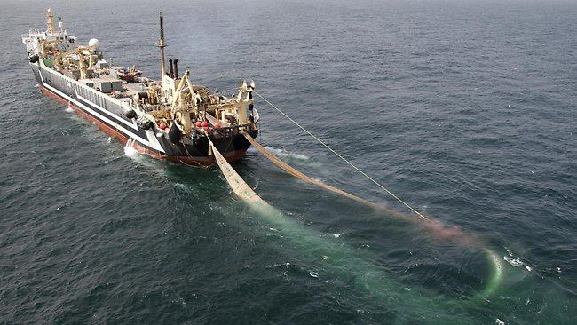 Resultado de imagen de pesca de arrastre