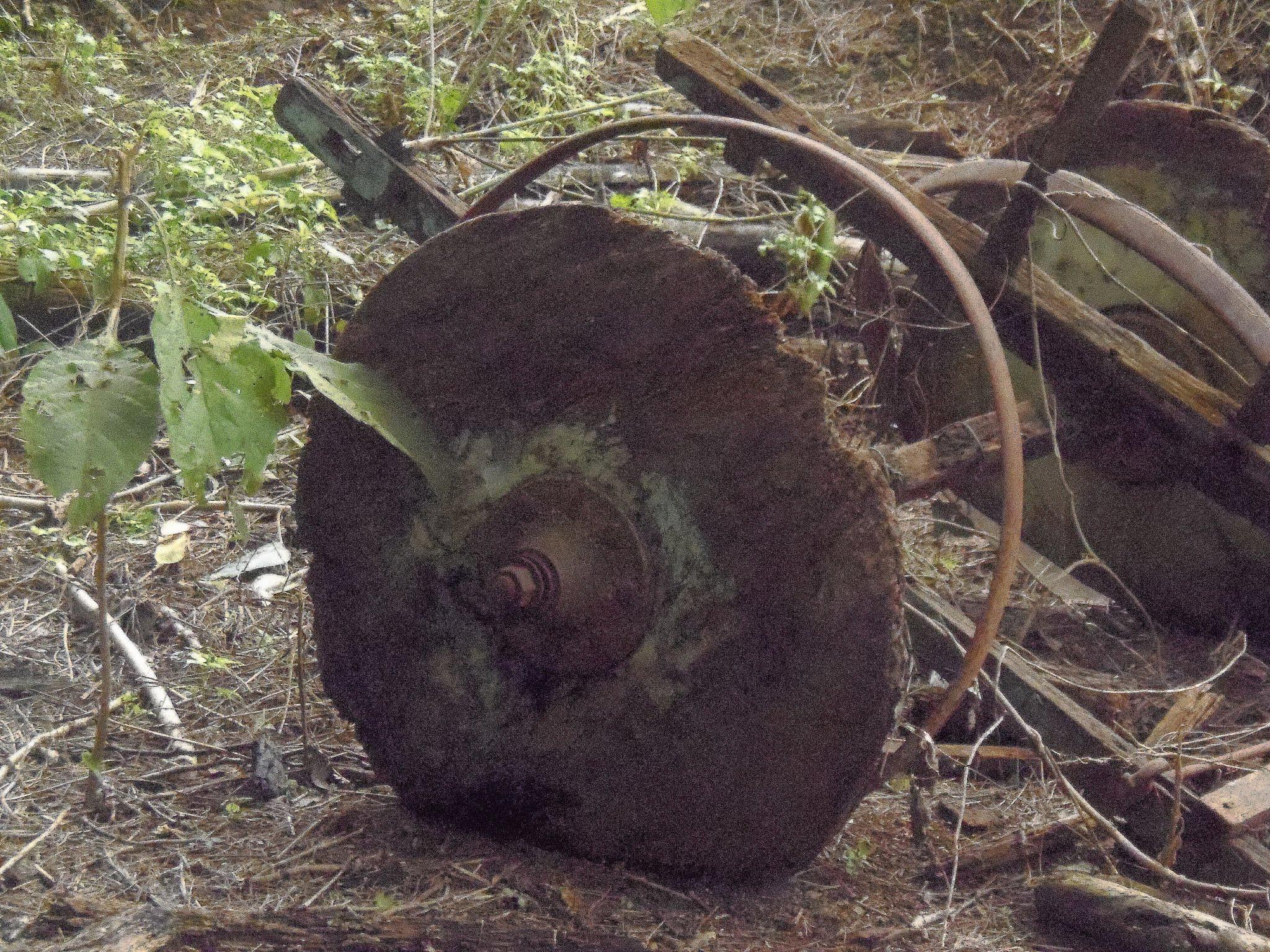 Restos centenarios de una carreta hallada muy cerca de la ruta original.