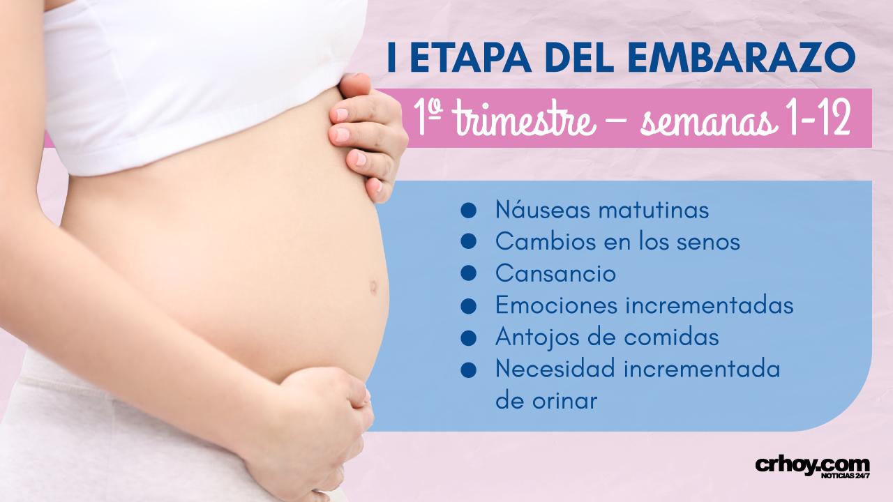 Resultado de imagen para cambios en el embarazo