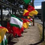 Ticos mantienen inquietud y protesta, pero repuntó interés en elecciones