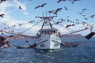 Las licencias para la pesca de arrastre vencen en 2019 (Imagen de Pretoma)