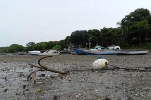 Proyecto de ley para prohibir artes de pescas ilegales no avanza