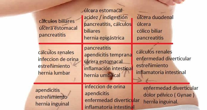 Los 9 cuadrantes del estomago